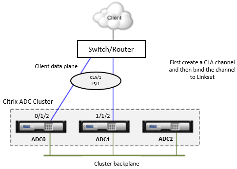 Linksets and Cluster Link Aggregation Group topology