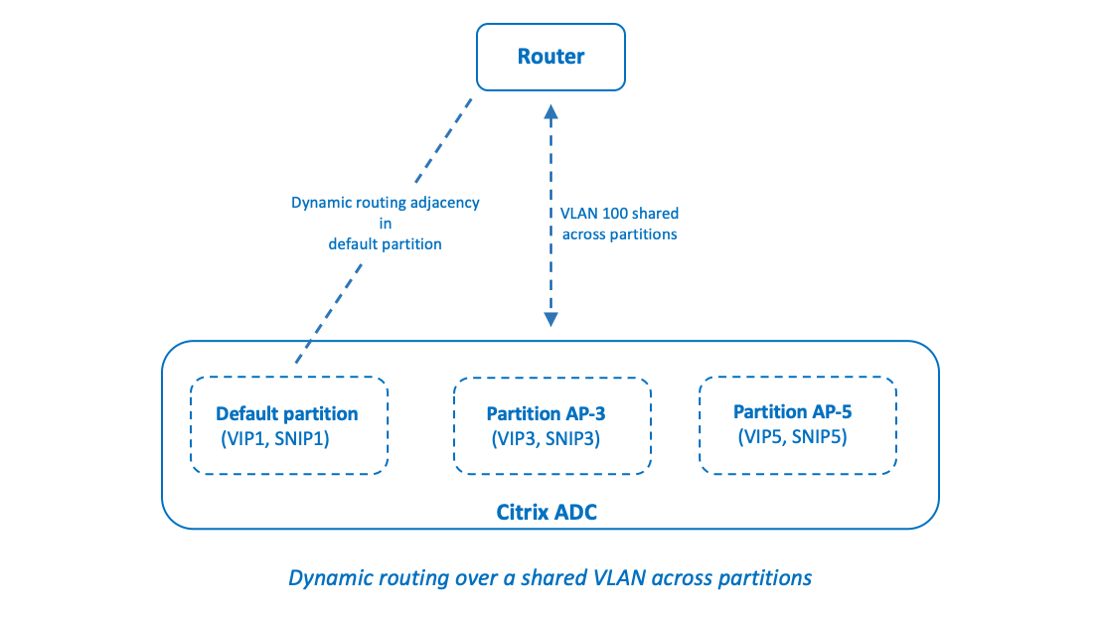 Dynamic routing over a shared VLAN across partitions