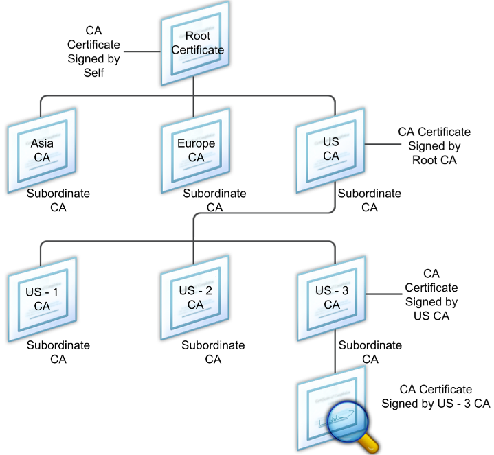 Displays a diagram of the hierarchical structure of a typical digital certificate chain.