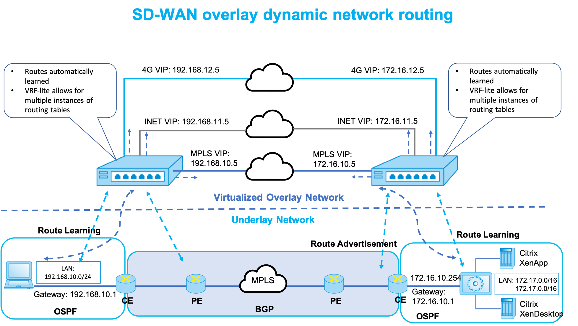 SD-WAN dynamic routing