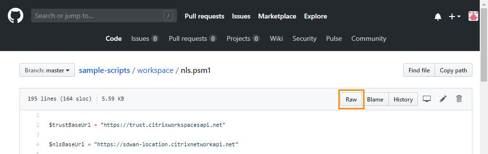 Github file view with Raw button highlighted