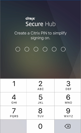 Image of the PIN prompt
