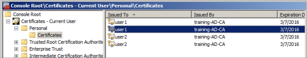 Image of the Certificate current users