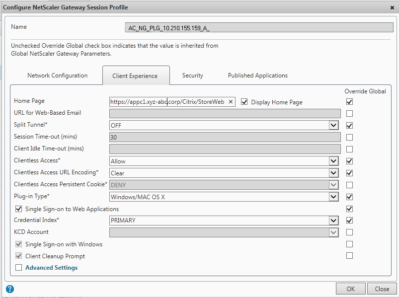 Client Experience Tab in the Session Profile for NetScaler Gateway Plug-in