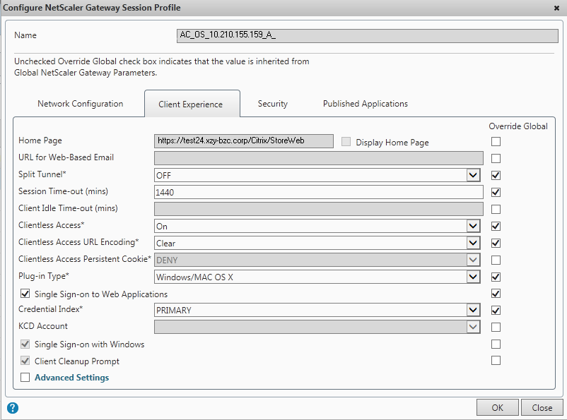Session Profiles for Receiver or Worx Home Created by the Quick Configuration Wizard