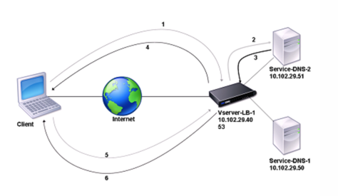 NetScaler as DNS proxy