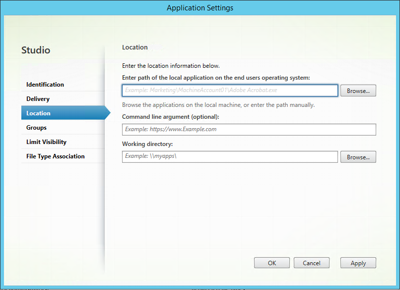 Citrix Studio application settings