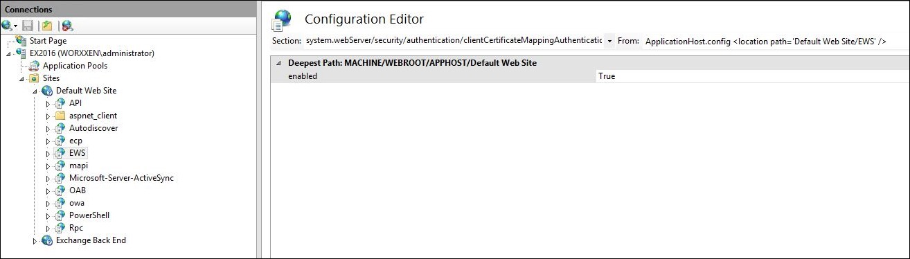 Image of IIS Manager Console